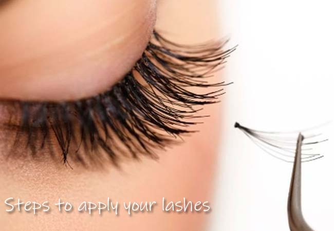 steps to apply your lashes